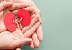 Journée européenne du don d'organe et de la greffe