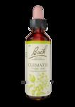 Acheter Fleurs de Bach® Original Clematis - 20 ml à Mérignac