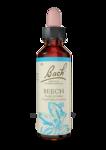 Acheter Fleurs de Bach® Original Beech - 20 ml à Mérignac