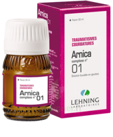 Lehning Arnica Complexe N° 1 Solution Buvable En Gouttes Fl/30ml à Mérignac