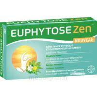 Euphytosezen Comprimés B/30 à Mérignac