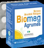 Lehning Biomag Comprimés à Croquer Agrumes B/90 à Mérignac