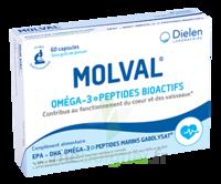 Dielen Molval 60 Capsules à Mérignac