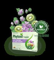 Phytoxil Transit Comprimés B/20 à Mérignac