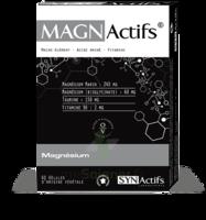 Synactifs Magnactifs Gélules B/60 à Mérignac