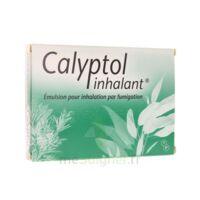 CALYPTOL INHALANT, émulsion pour inhalation par fumigation à Mérignac
