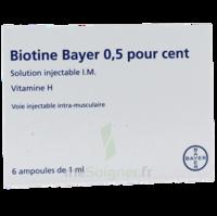 Biotine Bayer 0,5 Pour Cent, Solution Injectable I.m. à Mérignac