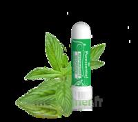 Puressentiel Respiratoire Inhaleur Respiratoire aux 19 Huiles Essentielles - 1 ml à Mérignac