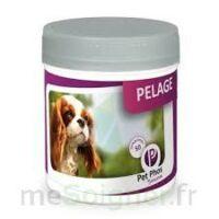 Pet - Phos Special Pelage, Bt 50 à Mérignac