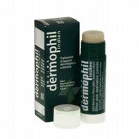 Dermophil Indien Pom Stick Girex/30g à Mérignac
