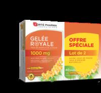 Forte Pharma Gelée Royale 1000 Mg Solution Buvable 2*b/20 Ampoules/10ml à Mérignac