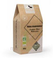 Na&Form Tisanes Tisane voies respiratoires Bio B/80g à Mérignac