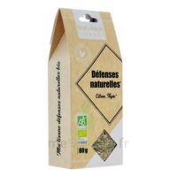 Nat&Form Tisanes Tisane défenses naturelles Bio B/80g à Mérignac