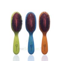 Cartel Brosse Cheveux Pneumatique Sanglier Large à Mérignac