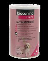 Biocanina Lait poudre maternisé B/400g à Mérignac