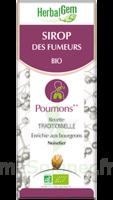 Herbalgem Sirop Bio Des Fumeurs 150ml à Mérignac