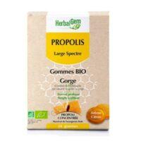 Herbalgem Propolis Large Spectre Gomme Bio B/24 à Mérignac