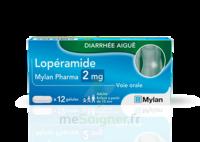 LOPERAMIDE MYLAN PHARMA 2MG, gélules à Mérignac