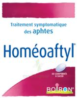 Boiron Homéoaftyl Comprimés à Mérignac