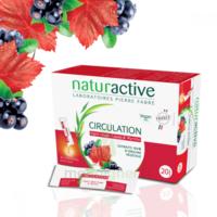 Naturactive Phytothérapie Fluides Solution Buvable Circulation 2b/20 Sticks/10ml à Mérignac