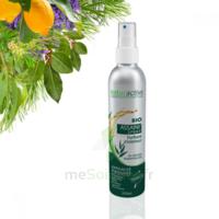 Naturactive Assaini'spray 200ml à Mérignac